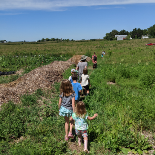 School's Out(doors) For the Summer!!: Pre-K – High School Farm Education at Kinwood