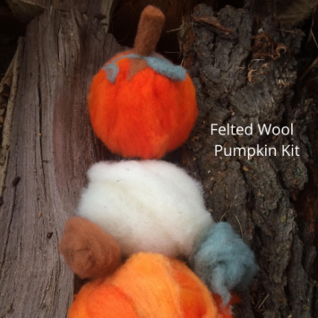 Felted Wool Pumpkin Kit