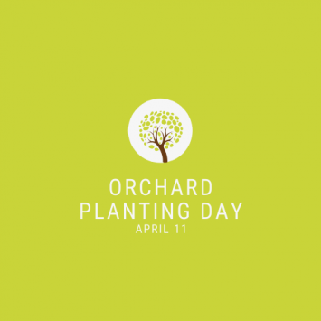Orchard Planting Day