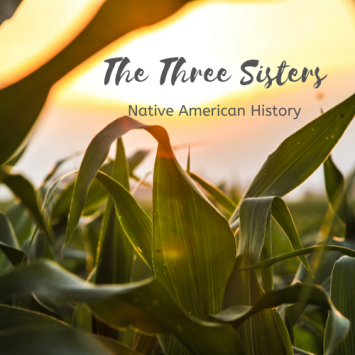 Farm School Day - The Three Sisters