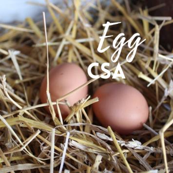 Pastured Egg CSA