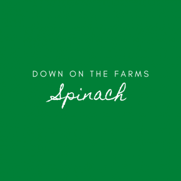 Down on the Farms Spinach