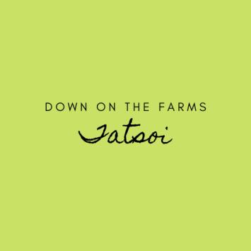 Down on the Farms Tatsoi
