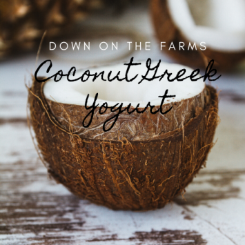 Down on the Farms Coconut Greek Yogurt - 16 oz
