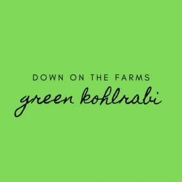 Down on the Farms Green Kohlrabi
