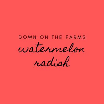 Down on the Farms Watermelon Radish