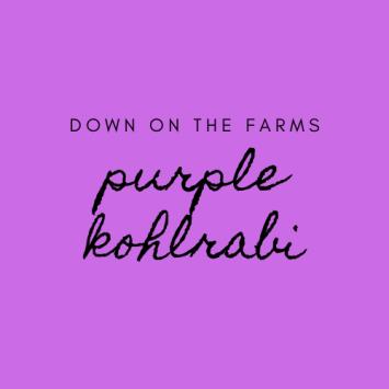Down on the Farms Purple Kohlrabi