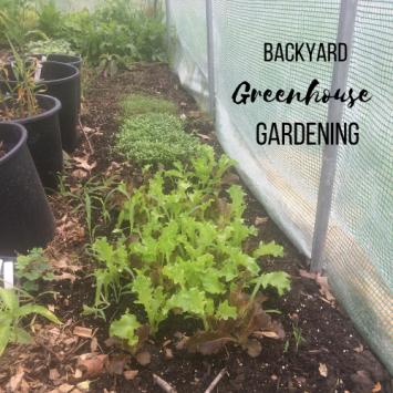 Backyard Greenhouse Gardening Class