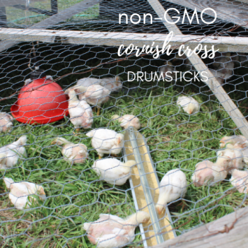 Non-GMO, Cornish Cross Drumsticks