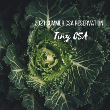 2021 Summer CSA Reservation - Tiny CSA at Kelly's