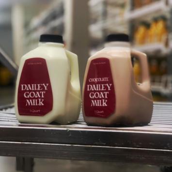 Dailey Farms Chocolate Goat Milk
