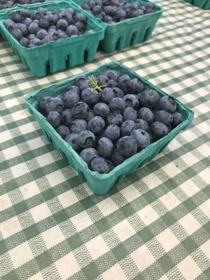 Blueberries, WW