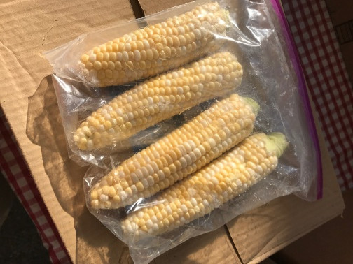 Corn, Sweet WW