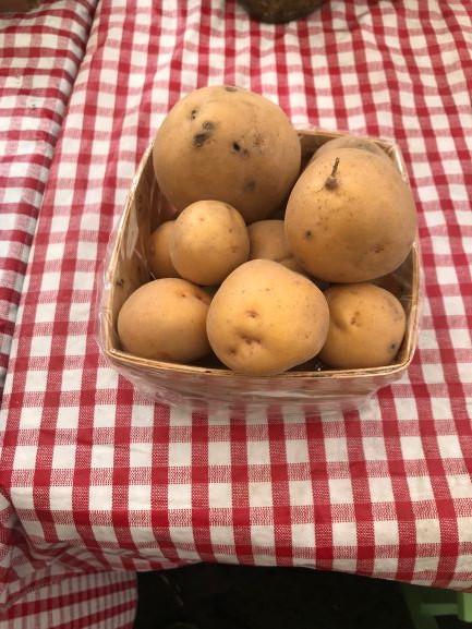 Potatoes, Yukon Gold WW