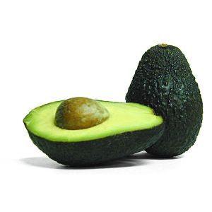 Avocados, CP
