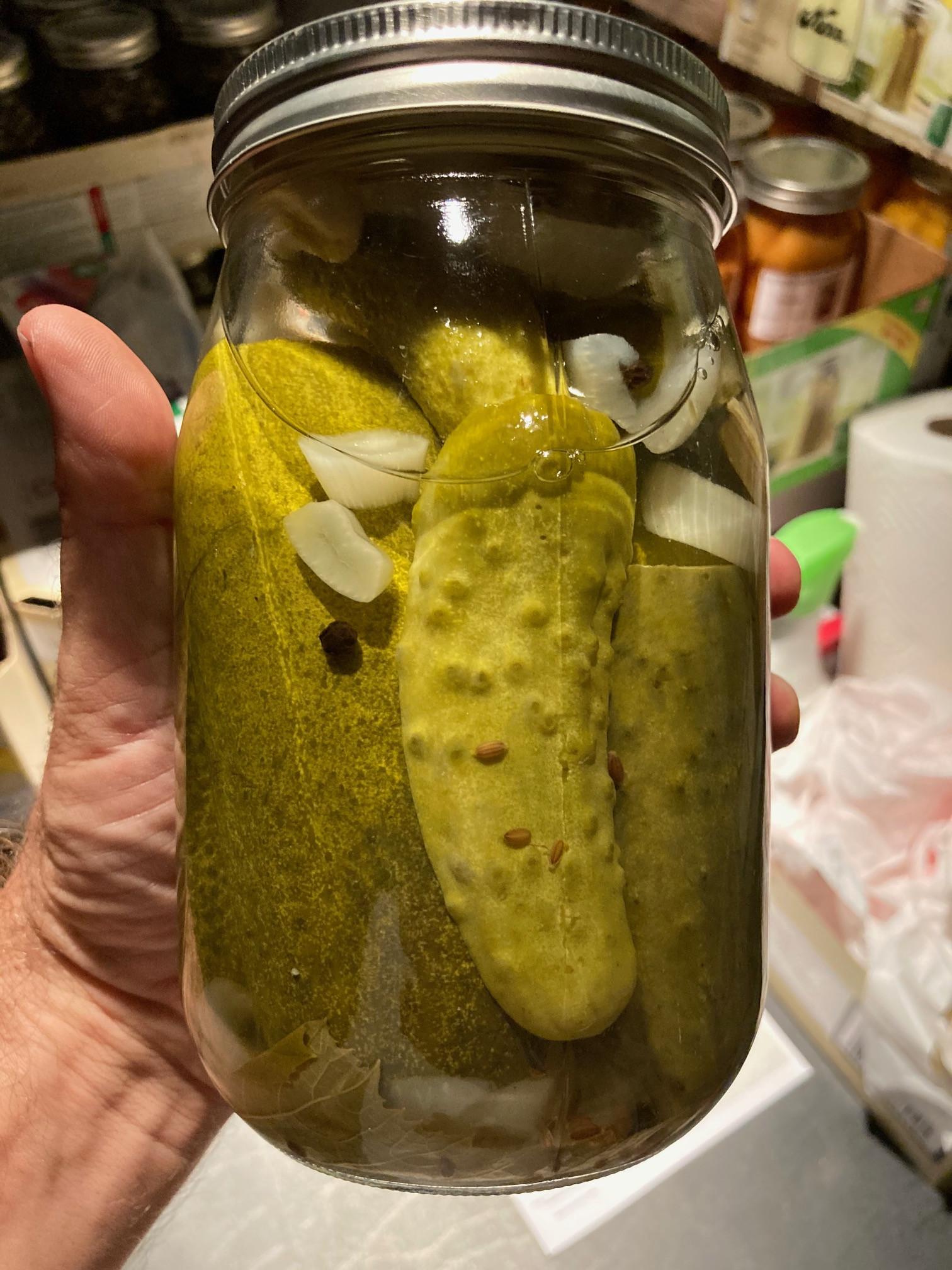 Dill Pickles WW
