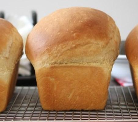 Bread, Yeast Farmhouse Egg