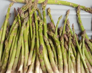 Asparagus, KMG