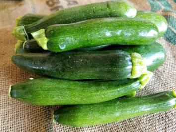 Squash, Zucchini AH