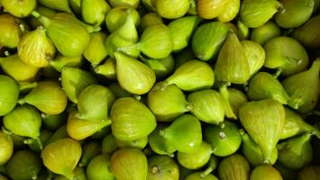 Figs, Fresh White