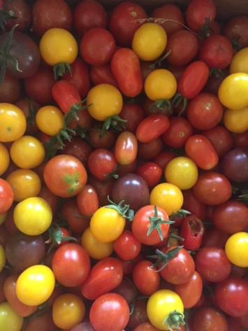 Tomatoes, Cherry PWHF