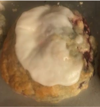 Berry Breakfast Scone