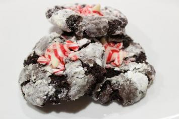 Santa Bites (12)