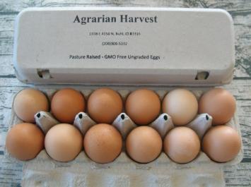 Eggs, Organic AH