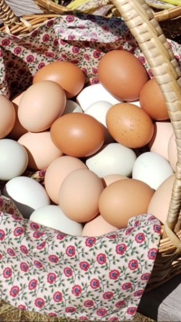 Eggs, RE