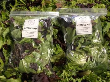 Lettuce, Mixed Greens SB