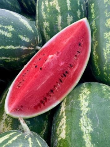 Watermelon FM
