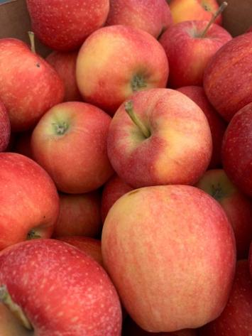 Apples, Honey Crisp