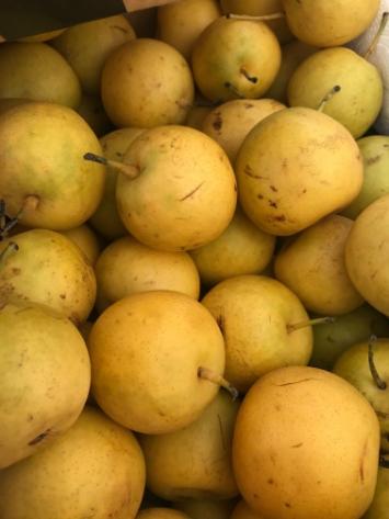 Pears, 20th Century Asian