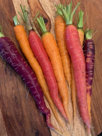 Carrots, FM