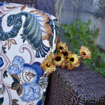 Bronze Beauty Calendula Seeds