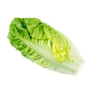 Lettuce, Romaine Hearts CP