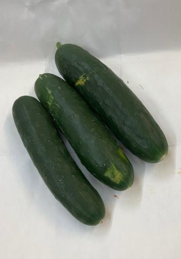 Cucumbers WW
