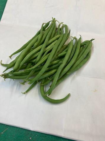 Beans, Green WW
