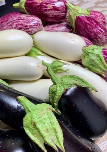 Eggplant FM