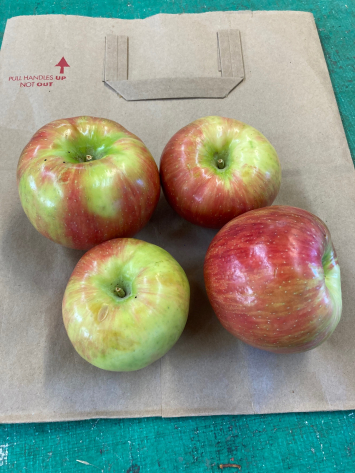Apples, New Crop Honeycrisp
