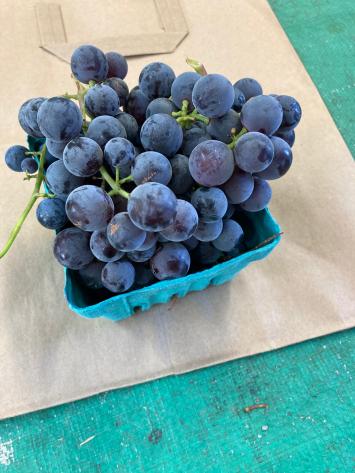 Grapes, Purple Seedless  WW