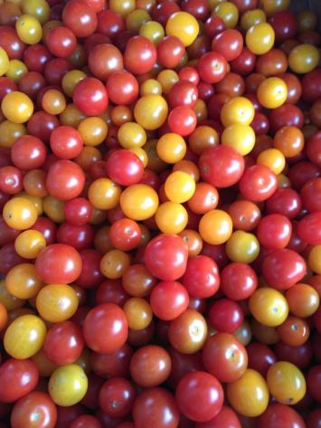 Tomatoes, Cherry Mixed WWP