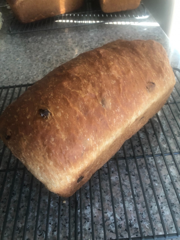 Bread, Cinnamon Raisin WKD