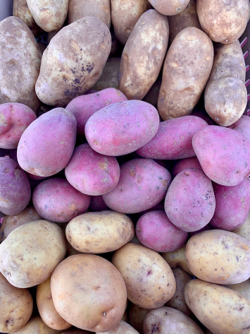 Potatoes, Red Organic FM