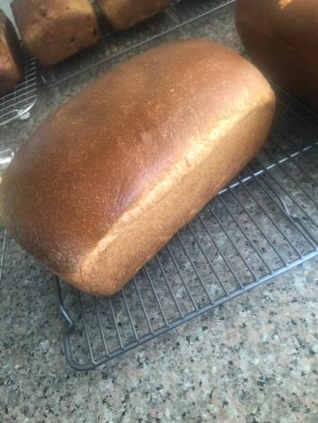 Bread, Whole Wheat