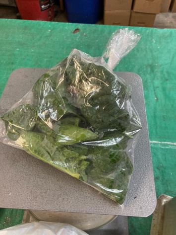 Spinach, WW