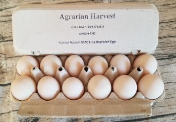 Eggs, Duck AH