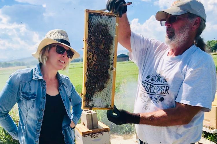 Honeycomb Harvest Q&A