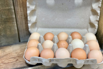 """Super Dozen"" Chicken Eggs"