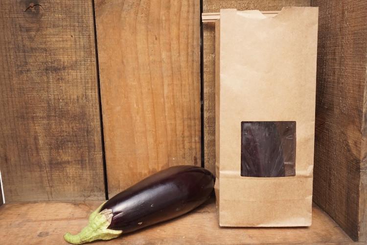 """Eggplant - """"Jaylo"""""""